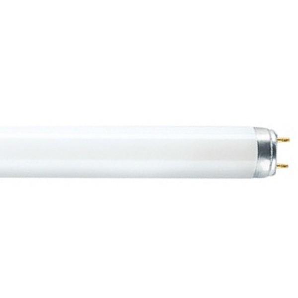 OSRAM TUBE L 30W/830 LUMILUX WARM WHITE
