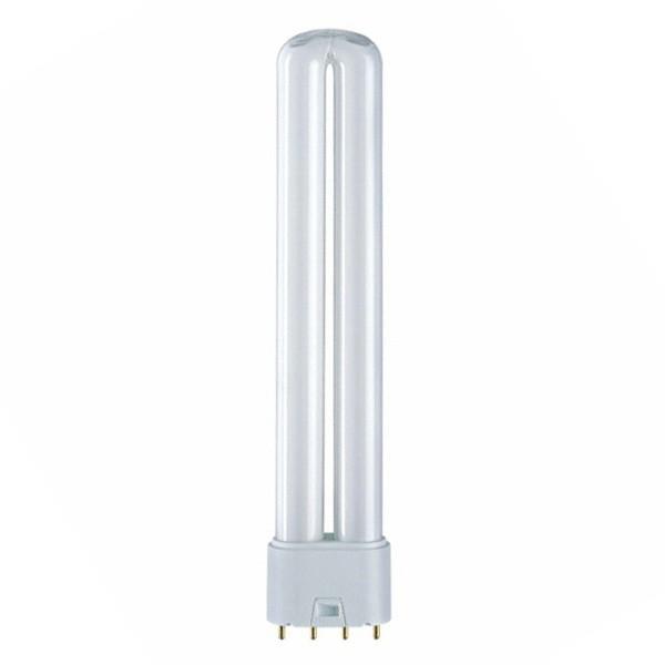 OSRAM DULUX L 40W/840 LUMILUX COOL WHITE 2G11