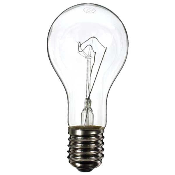 GLS Light Bulb 240V 300W E40 Clear