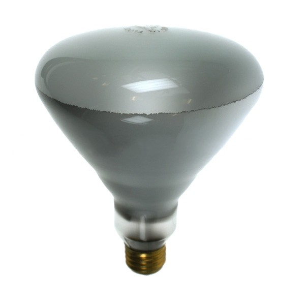 Reflector Spot R125 300R/FL 300WE26 120V Fl