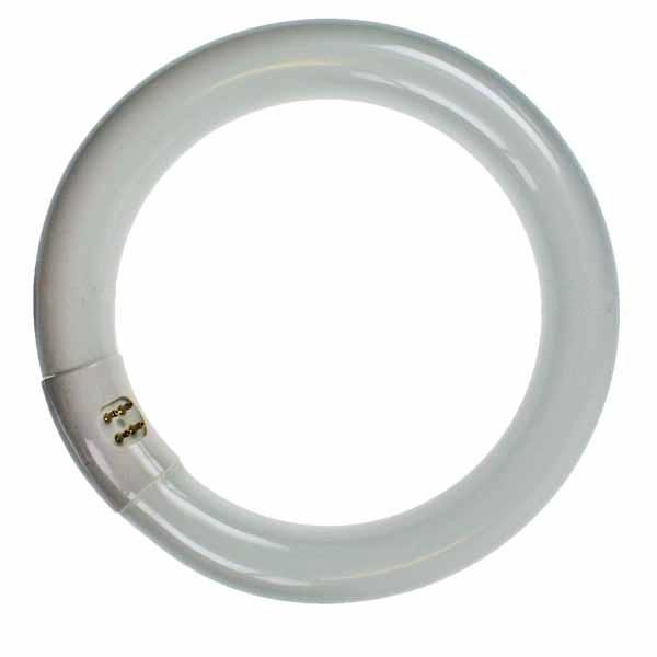 CIRCULAR 22W 8 inch  T9 BL368/BL350 SHRINKWRA