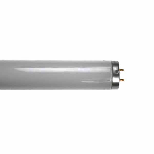 25W 15 inch T12 BL368/BL350 FLYKILLER