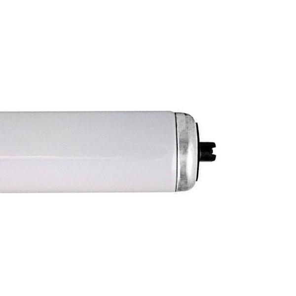 Fluorescent Tube F96 T12 CW HO 110W R17D