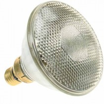 PAR 38 Reflector 240V 120W Flood