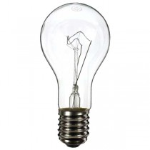 GLS Light Bulb 240V 300W E40 Clear