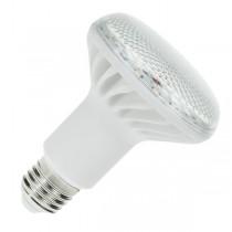 PRO LITE LED R80 12W E27 3000K
